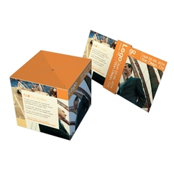 Jumping Cube Direct Mail